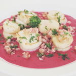 Scallops with Bacon and Beet Purée
